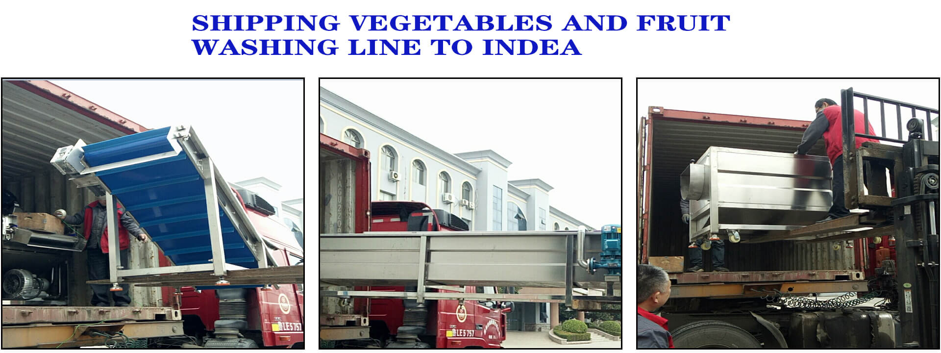 shipping vegetables and fruit washing production line to India